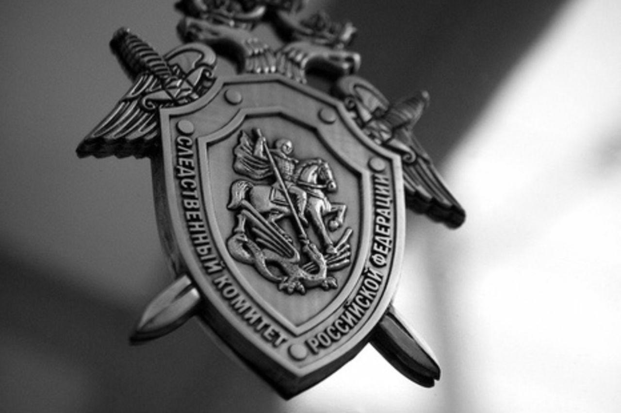 АНТИЖЕНСКАЯ ПОЛИТИКА — 2018, Победитель